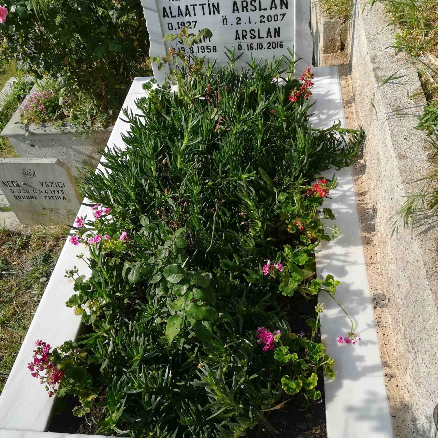 Mezar Bakım Örneği